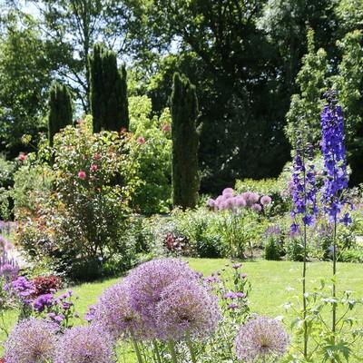 Blumen und Stauden im Oberdieckgarten der Weihenstephaner Gärten in Freising