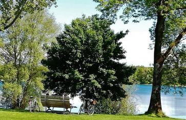 Bademöglichkeit am Echinger See