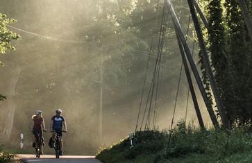 """Hopfengärten säumen die Strecke entlang der Tour """"Wege zum flüssigen Gold"""""""