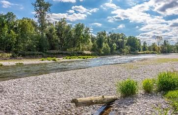 Naturschutzgebiet Isarauen mit Kiesbank zwischen Freising und Moosburg©Landratsamt Freising_Udo Bernhart