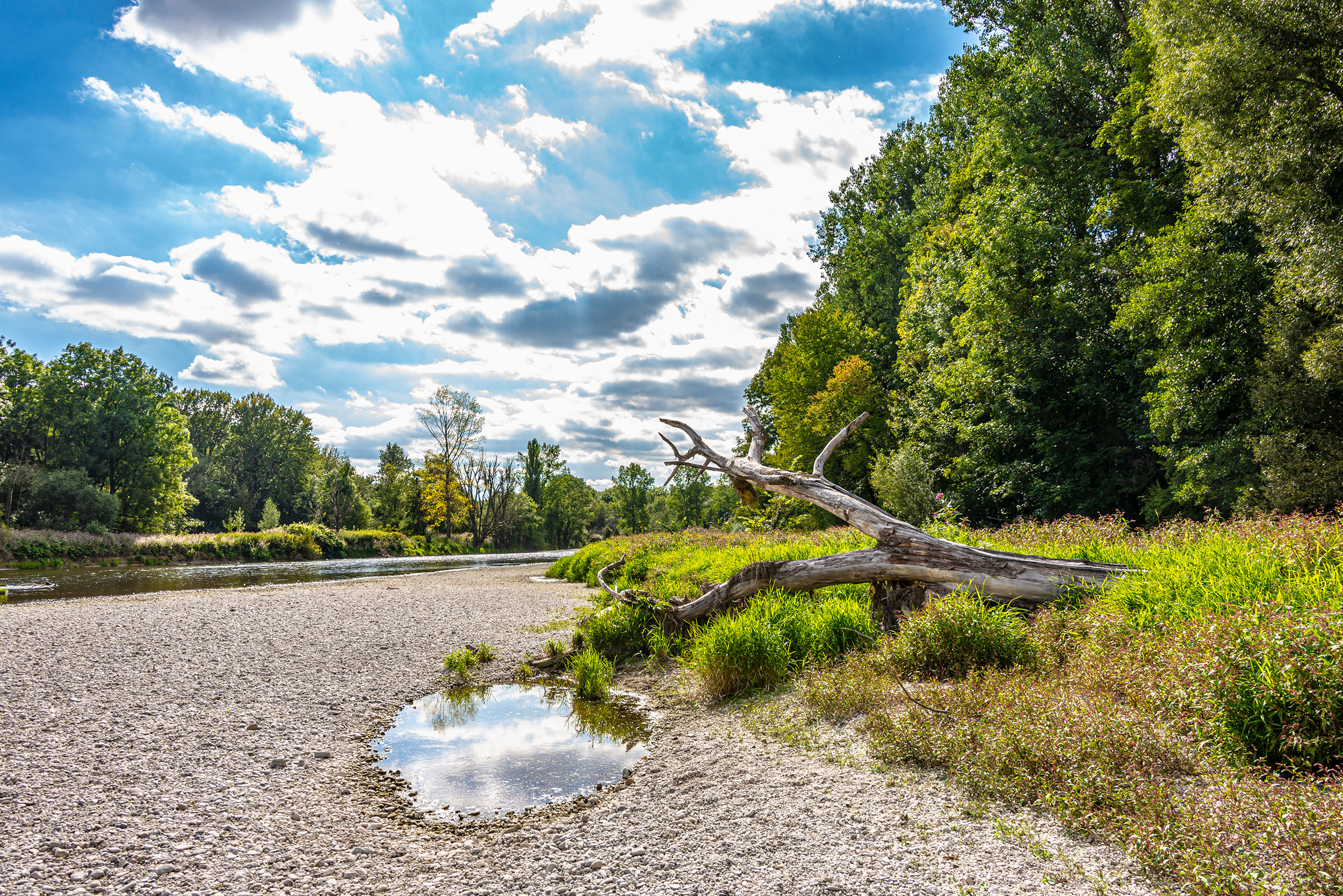 Naturschutzgebiet Isarauen