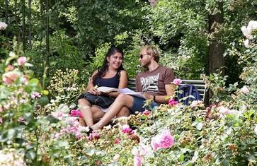 Gemütliche Pause im Rosengarten in Freising