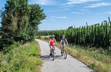 Bockerlradweg zwischen Enzelhausen und Osterwaal
