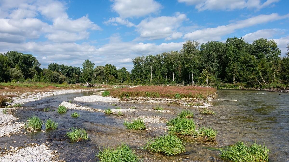 Naturschutzgebiet Isarauen zwischen Oberhummel und Niederhummel