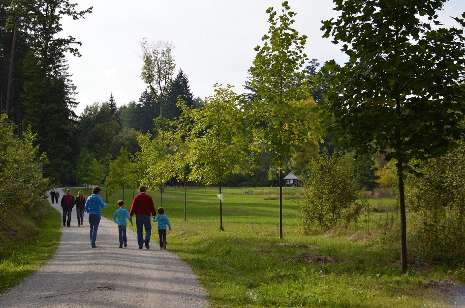 Spaziergänger im Weltwald im Kranzberger Forst